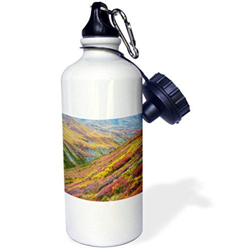 3dRose-Danita-Delimont-Alaska-USA-Alaska-Brooks-Range-Tundra-on-mountain-landscape-21-oz-Sports-Water-Bottle-wb2783911-0