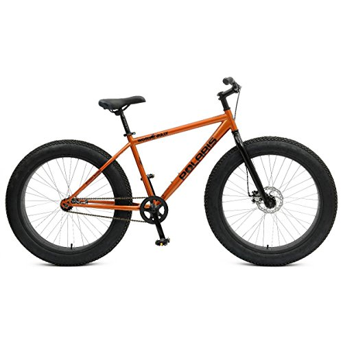 Polaris-Wooly-Bully-Fat-Tire-Bicycle-0