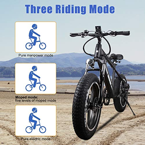 BRIGHT-GG-NAKTO-20-inch-300W-Fat-Tire-Electric-Bike-for-Adults-SnowMountainBeach-Ebike-with-Shimano-6-Speed-Gear-and-48V-8AH-Lithium-Ion-Battery-0-1