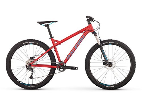 RALEIGH-Bikes-Tokul-2-Mountain-Bike-Red-15Small-0-0